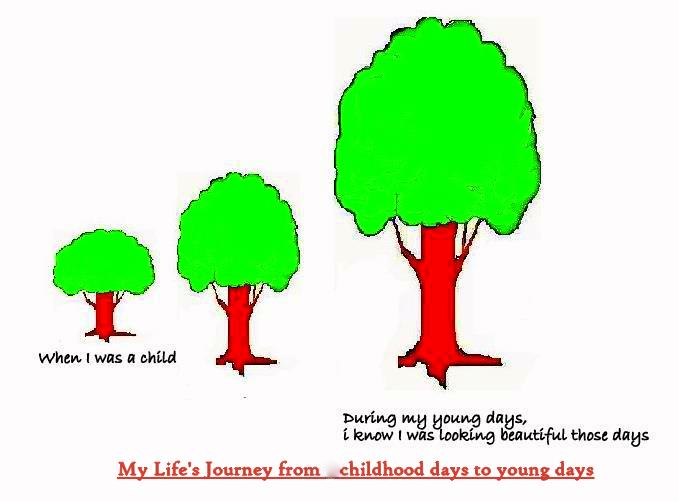 Trees In My Life
